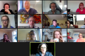 CHANGE Partners review results of the research phase in online meeting
